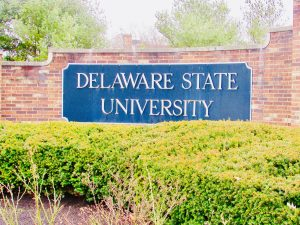 student lawyers in delaware